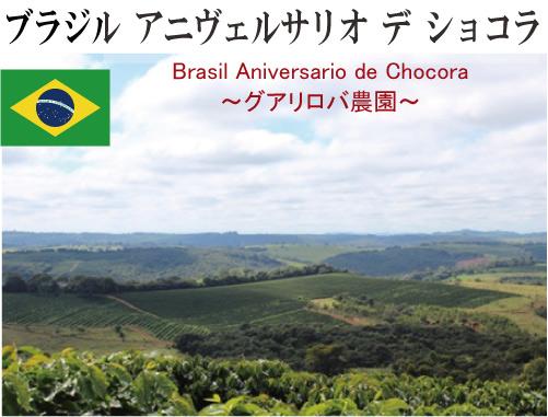 ブラジル アニヴェルサリオ デ ショコラ